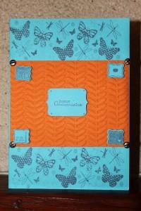 Carte anniversaire N°2 anniv-papillon-200x300